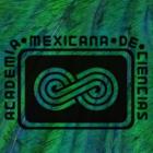 Copia del penacho de Moctezuma, analizada con física <i>in situ</i>